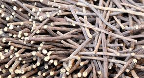 Licorice sticks for sale in the market in southern Europe Royalty Free Stock Photography