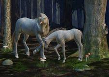 Licorne de mère et de poulain Photographie stock