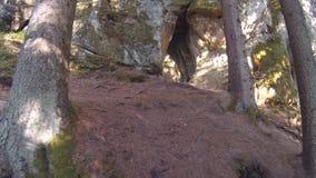Licu Langu Sandstone Cliffs. Sand Formations at Lode Behind Cesis in Latvia.  Pov Steadicam Shot