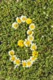 Liczba trzy od kwiat liczb Obrazy Royalty Free