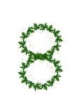 Liczba 8 zieleni liście Fotografia Stock