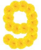 Liczba 6 zrobił od dandelion kwiatu Fotografia Royalty Free