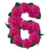 Liczby 6 śliczne różowe róże ilustracyjne Fotografia Stock