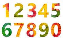 Liczby jesień liście odizolowywający na białym tle Zdjęcia Stock