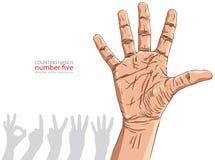 Liczby ręki znaki ustawiający, liczba pięć, szczegółowy wektorowy illustratio Zdjęcie Stock