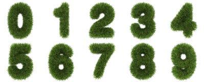 Liczby zielonej trawy pojęcie Odizolowywający na bielu Zdjęcie Royalty Free