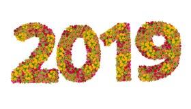 Liczby 2019 zrobili od Zinnias kwiatów Fotografia Royalty Free