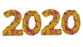 Liczby 2020 zrobili od Zinnias kwiatów Zdjęcia Royalty Free