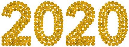 Liczebnik 2020 od żółtego kwiatu tansy, odizolowywającego na bielu plecy Obrazy Stock
