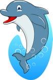 Śliczna delfin pozycja Obrazy Stock