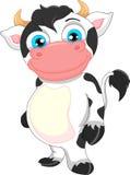 Śliczna dziecko krowy kreskówka Zdjęcia Stock
