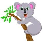 Śliczna koali kreskówka na drzewie Obrazy Stock