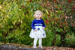 ?liczna ma?a berbe? dziewczyna robi spacerowi przez jesie? parka Szcz??liwy zdrowy dziecko cieszy si? chodzi? z rodzicami Pogodny obraz royalty free