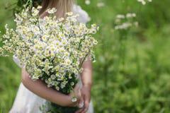 ?liczna ma?a dziewczynka z bukietem chamomiles na tle zieleni pole zdjęcie royalty free