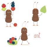 Śliczna mrówka Zdjęcia Royalty Free