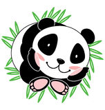 śliczna panda Obrazy Royalty Free