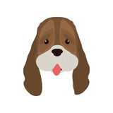 śliczna psia twarz Fotografia Royalty Free