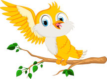 Śliczna ptasia kreskówka dla ciebie projektuje Fotografia Royalty Free