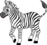 Śliczna radosna zebra Zdjęcia Royalty Free