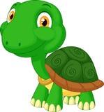 Śliczna tortoise kreskówka Zdjęcie Stock