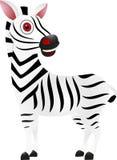 Śliczna zebra Fotografia Stock