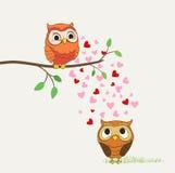 śliczne ilustracyjne miłość sowy wektorowe Zdjęcia Royalty Free