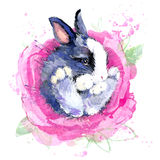 Ślicznego królika kwiatu koszulki czarodziejskie grafika królik czarodziejska ilustracja z pluśnięcie akwarelą textured tło Zdjęcie Stock