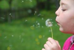 Ślicznej dziewczyny podmuchowy dandelion Zdjęcia Royalty Free