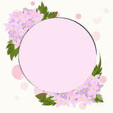 Śliczni i romantyczni kwiaty Obrazy Stock
