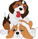 Śliczni kreskówek beagles Zdjęcie Royalty Free