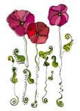 śliczni kwiaty ilustrowali Obrazy Stock