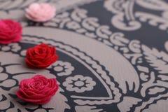 Śliczni menchii i czerwieni kwiaty na wzorzystym tle Obrazy Stock