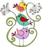 Śliczni ptaki z dandelion kwiatem Fotografia Royalty Free