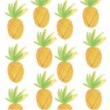 Śliczny, ananasy, wektor Zdjęcia Stock