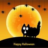 Śliczny Halloweenowy kartka z pozdrowieniami z zabawa czarnym kotem Zdjęcie Royalty Free