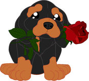 Śliczny kreskówka jamnik z kwiatem Obraz Royalty Free