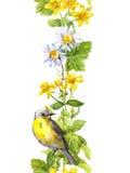 Śliczny ptak, dzicy ziele, kwiaty Kwiecista akwarela Bezszwowa granicy rama Zdjęcia Royalty Free