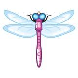 Śliczny Purpurowy Dragonfly z Blue Wings Obraz Stock