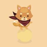 Śliczny Shiba Inu pies Obraz Stock
