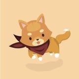 Śliczny Shiba Inu pies Obraz Royalty Free
