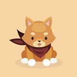 Śliczny Shiba Inu pies Fotografia Stock