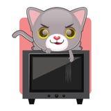 Śliczny szary kot drapa telewizyjnego ekran Obraz Royalty Free