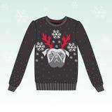 Śliczny zima pulower z psem Zdjęcia Royalty Free