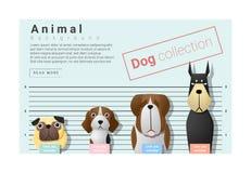 Śliczny zwierzęcy rodzinny tło z psami Fotografia Stock