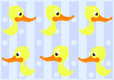 Ślicznych kaczek Bezszwowy wzór Fotografia Royalty Free