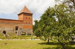 Lida, Weißrussland - 11. Juli 2016: Steingebäude nimmt die Gestalt des Missbrauchs des Vierecks mit zwei Ecktürmen an In der Fron Lizenzfreie Stockfotografie