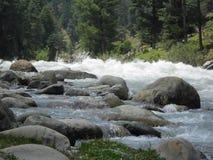 Lidder flod, Pahalgam, Jammu & Kashmir, Indien Royaltyfri Bild
