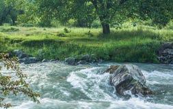 Lidder-Fluss im pahalgam Lizenzfreie Stockfotos