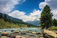 Lidder river flowing through picturesque Pahalgam. Kashmir, India Stock Photos