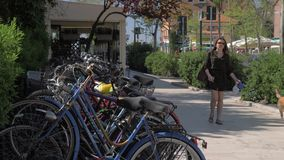 Woman with dog walking in the street with parked bikes. Lido, Italy. LIDO, ITALY - APRIL 21, 2018: Street view with lots of parked bikes and young woman walking stock video footage